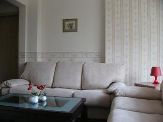 Vip Apartments Sofia - Vitosha Apartment - Sofia vacation rentals