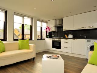 Recently renovated modern three bedroom apartment. - London vacation rentals
