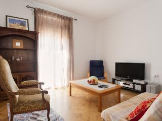 Bright Condo with Washing Machine and Television - San Pol de Mar vacation rentals