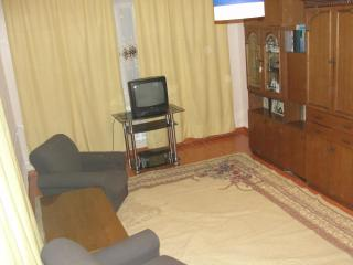 Flat by the International airport - Tajikistan vacation rentals