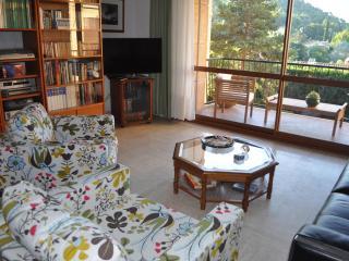 Beautiful apartement Aix en Provence - Aix-en-Provence vacation rentals