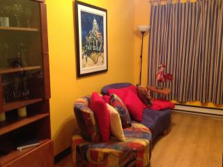 Cozy apartment close to the métro - Montreal vacation rentals
