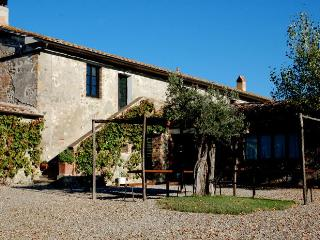 Blue House - Apartament with swimming pool in Val d'Orcia - Castiglione D'Orcia vacation rentals