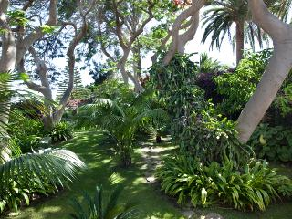 DREAM VACATION, THE CLOSEST TO CARIBBEAN IN EUROPE - Gomera vacation rentals