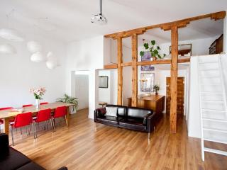 PLAZA MAYOR LOFT, balcony VIEWS over its 1790 Arch - Madrid vacation rentals