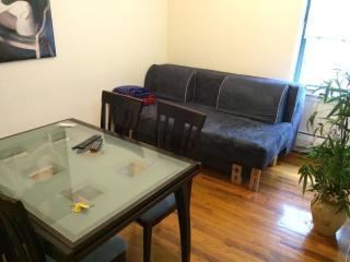 2 Bedroom Apartment in East Village - New York City vacation rentals