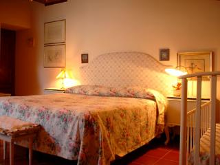 Typical and Beautiful apartment Villa in Galluzzo - Italy vacation rentals