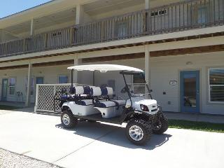 A Wave From It All 4 bedroom, 3 bath, pet 25 lbs,*Free golf cart, sleeps 12 - Port Aransas vacation rentals