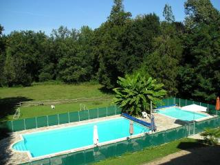 Chateau and 5 holiday homes  with 2 heated swimming pools in the Dordogne France - Hautefort vacation rentals