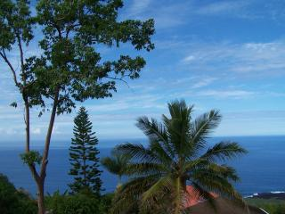 Beautiful House with Deck and Internet Access - Captain Cook vacation rentals