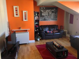 Lovely 1 bedroom Apartment in Galway - Galway vacation rentals