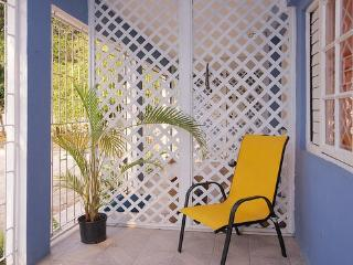 BoHo Flats of Barbican Apt#3 - Kingston vacation rentals