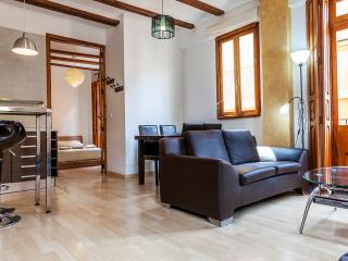 Apartment En Bou ( City centre) - Valencia vacation rentals