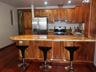 Arenal Maleku Luxury Condo 12-2-1-1 - Naranjos Agrios vacation rentals
