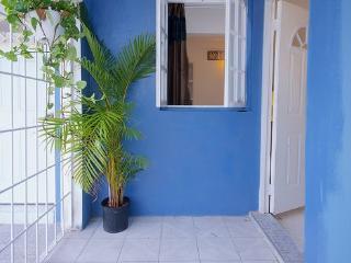 BoHo Flats of Barbican Apt#1 - Kingston vacation rentals