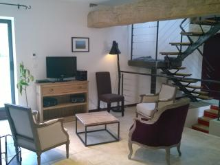 Family home in wine village with garden sleeps 7/9 - Santenay vacation rentals
