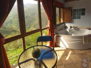 Carbayu - Jacuzzi in the mountains and fireplace - Proaza vacation rentals
