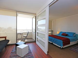Apartamento Parque Forestal 8 Santiago Centro - Santiago vacation rentals