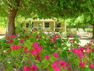 Yepton Estate Cottages- Superior 1-bedroom Cottage - Saint John's vacation rentals