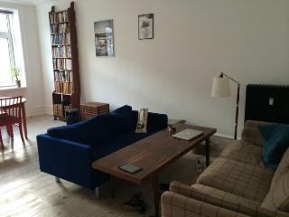 Bright Copenhagen apartment at the nice Vesterbro area - Copenhagen vacation rentals