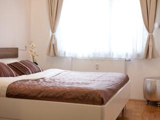 Nice Condo with Internet Access and Dishwasher - Ljubljana vacation rentals