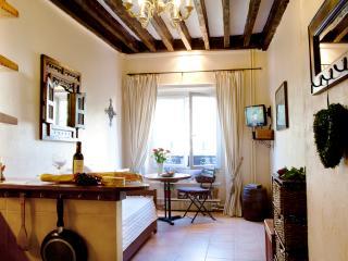 Canal St Martin HIP STUDIO * FREE SEINE CRUISE - Paris vacation rentals