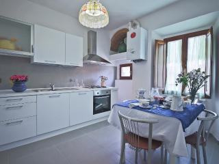 Capponi 72 - Florence vacation rentals