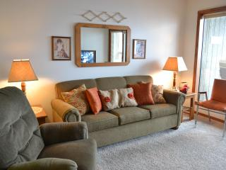 2BD/2BA Condo At Notch Resort - Branson West vacation rentals