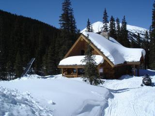 Nice Cabin with Internet Access and Cleaning Service - Monarch vacation rentals