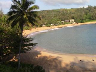 Ocean Front Property With A Billion Dollar View - Anahola vacation rentals