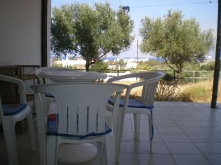 Nice Condo with Internet Access and Garden - Agios Nikolaos vacation rentals