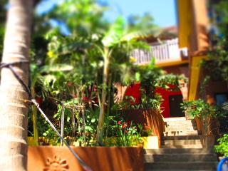 Cozy San Agustinillo Condo rental with Internet Access - San Agustinillo vacation rentals