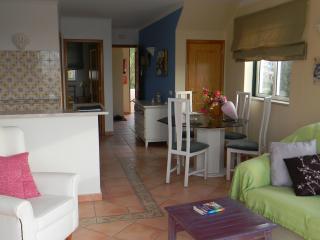 great one bedroom unit - Lagoa vacation rentals