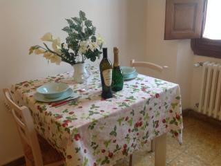 ZANOBBINO APARTMENT - Florence vacation rentals