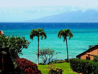 Ocean View Condo, West Maui Resort - Lahaina vacation rentals
