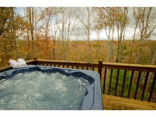 La Maison D'eleonore * Coosawattee Resort* Bargain - Ellijay vacation rentals