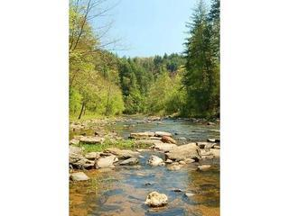 Rivers Edge *Waterfront and Private* - Ellijay vacation rentals