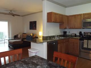 Wonderful Apartment in Woodlak2GA9100414 - Houston vacation rentals