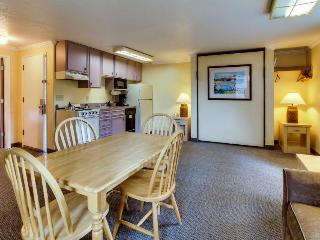 Pet-friendly studio w/ full kitchen; walk to Haystack Rock - Cannon Beach vacation rentals
