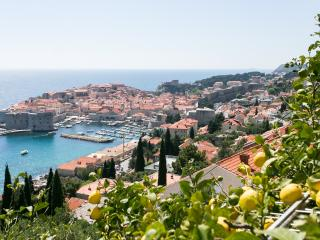 Apartment Aquarell - Dubrovnik vacation rentals
