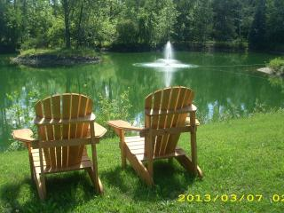 Alfa getaway (  Best View ) - Innisfil vacation rentals