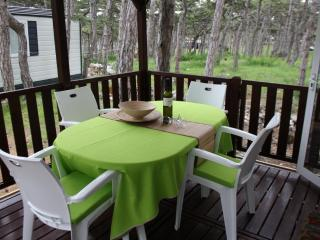 Perfect Razanac Cottage rental with Internet Access - Razanac vacation rentals