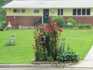 1950's Rambler Guest House 10 miles from DC - Alexandria vacation rentals