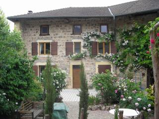 Fab Farmhouse with grand piano- Haut Beaujolais/Burgundy border - Saint-Igny-de-Vers vacation rentals
