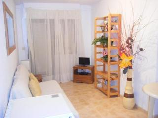 One-Bed Apartment 2 minutes from the beach - Torrevieja vacation rentals