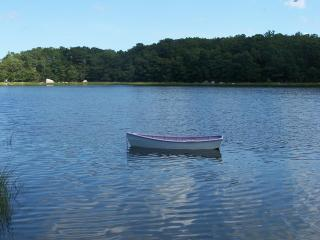 Charming Cottage with Internet Access and Dishwasher - Monument Beach vacation rentals