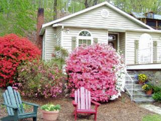 Quaint &  Pet Friendly Evergreen Cottage - Lake Lure vacation rentals