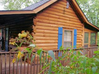 Side view of Blue Skies see Chimney Rock  from the porch - GREAT VALUE! Blue Skies Log Cabin - Cozy & Private - Lake Lure - rentals