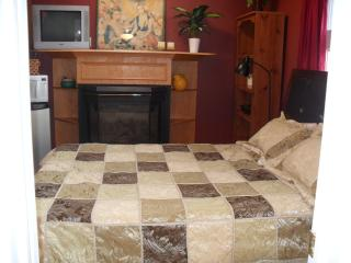 Furn.bachelor/steps Sq.one/mississauga - Milton vacation rentals