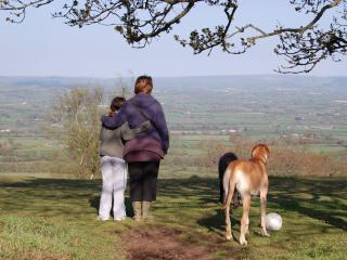 Family run B&B in East Devon close to Lyme Regis - Hawkchurch vacation rentals